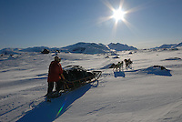 Dogsledgde,Sarek national park,Sweden