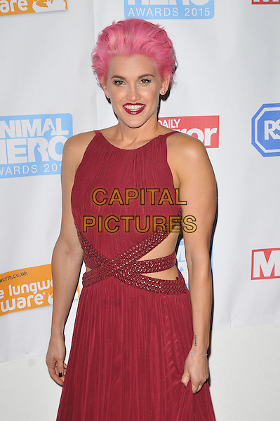 Ashley Roberts attends the Daily Mirror &amp; RSPCA Animal Hero Awards 2015, 8 Northumberland Avenue, Northumberland Avenue, London, England, UK, on Wednesday 21 October 2015. <br /> CAP/CAN<br /> &copy;CAN/Capital Pictures