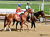 If Not For Her at Delaware Park racetrack on 6/25/14