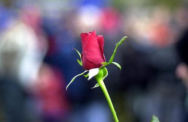Gedenken an die Opfer der Reichspogromnacht 1938 und des Holocaust<br /> Am 9. November 2002 gedachten in Berlin ca. 400 Menschen mit einer Antifaschistischen Kundgebung der Opfer der der Reichsprogromnacht 1938 und des Holocaust. Sie demosntierten ebenfalls gegen die Zunahme von antisemitischen Uebergriffen gegen Juden und Juedinnen in Deutschland. Uebrlebende Zeitzeugen des NS-Regimes wandten sich mit scharfen Worten gegen die Asylpolitik der Bundesregierung und forderten die Aufloesung der Abschiebegefangnisse.<br /> 9.11.2002, Berlin<br /> Copyright: Christian-Ditsch.de<br /> [Inhaltsveraendernde Manipulation des Fotos nur nach ausdruecklicher Genehmigung des Fotografen. Vereinbarungen ueber Abtretung von Persoenlichkeitsrechten/Model Release der abgebildeten Person/Personen liegen nicht vor. NO MODEL RELEASE! Nur fuer Redaktionelle Zwecke. Don't publish without copyright Christian-Ditsch.de, Veroeffentlichung nur mit Fotografennennung, sowie gegen Honorar, MwSt. und Beleg. Konto: I N G - D i B a, IBAN DE58500105175400192269, BIC INGDDEFFXXX, Kontakt: post@christian-ditsch.de<br /> Bei der Bearbeitung der Dateiinformationen darf die Urheberkennzeichnung in den EXIF- und  IPTC-Daten nicht entfernt werden, diese sind in digitalen Medien nach &sect;95c UrhG rechtlich geschuetzt. Der Urhebervermerk wird gemaess &sect;13 UrhG verlangt.]