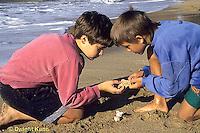 AC01-035z  Ocean - boys on beach examining shells