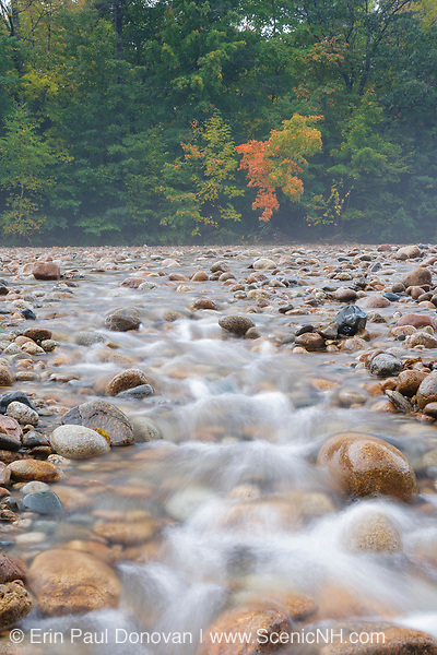 Saco River in the White Mountains, New Hampshire USA during the autumn months