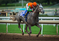 01-08-17 Santa Ynez Stakes