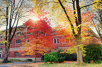 Langton Hall with fall color and sun. Oregon State University.