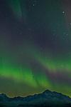 Northern lights dancing over Mount McKinley and Alaska Range. Denali Viewpoint South, Denali State Park, Interior Alaska, Winter.