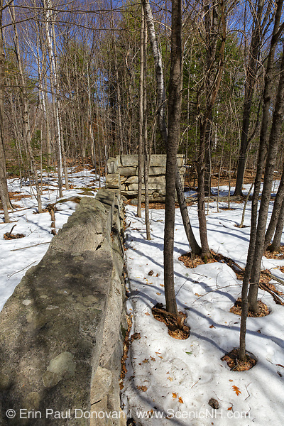 The remnants of an abandoned granite foundation from the 19th - 20th century mountain settlement in the forest of Pawtuckaway State Park in Deerfield, New Hampshire USA during the spring months.
