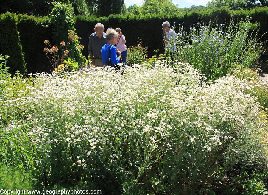 People in the herb garden at Sissinghurst castle gardens, Kent, England, UK