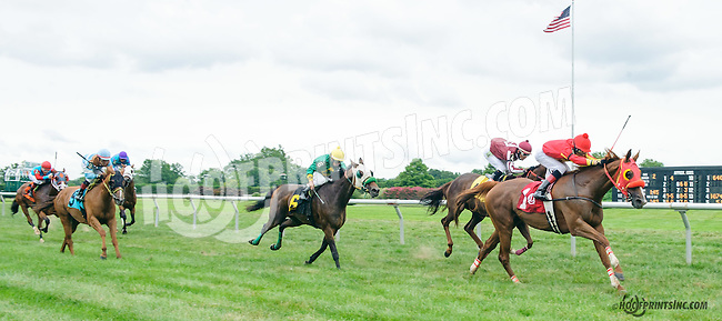 Ava Again winning at Delaware Park on 8/9/15
