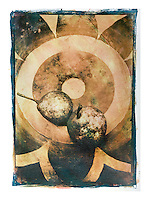"""Size 23.5"""" x 35.5""""<br /> <br /> This is a 'one off' print using sensitized gum arabic and watercolor, a 19th. century photographic process. The print is on watercolor paper and is completely archival<br /> Each print can take up to four days to produce.<br /> This print is unique due to the process involved. I may however, produce the same basic image but with a different set of colors, though no more than ten examples.<br /> <br /> Prices on request"""