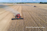 63801-13502 Combines harvesting soybeans in fall-aerial  Marion Co. IL