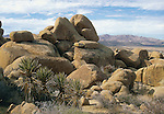 Joshua Tree National Park, Mastodon Peak area