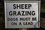 Sheep Grazing dogs must be on a lead sign Windmill Hill, a Neolithic causewayed enclosure, near Avebury, Wiltshire, England, UK