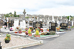 St.Peters Cemetary...Photo NEWSFILE.(Photo credit should read NEWSFILE)....This Picture has been sent you under the condtions enclosed by:.Newsfile Ltd..The Studio,.Millmount Abbey,.Drogheda,.Co Meath..Ireland..Tel: +353(0)41-9871240.Fax: +353(0)41-9871260.GSM: +353(0)86-2500958.email: pictures@newsfile.ie.www.newsfile.ie.FTP: 193.120.102.198.