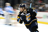 1/28/13 Evansville Iceman at Toledo Walleye