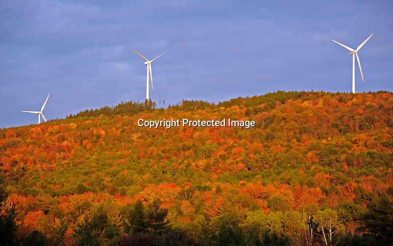 Windmills on Ridge in Evening Sunshine during Fall Season in Lempster, New Hampshire USA
