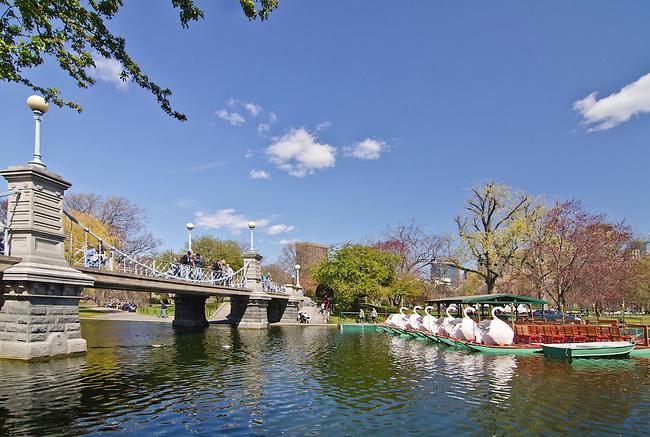 Swan Boats sit waiting customers near the Boston Commons Lagoon Bridge, Boston, Massachusettes