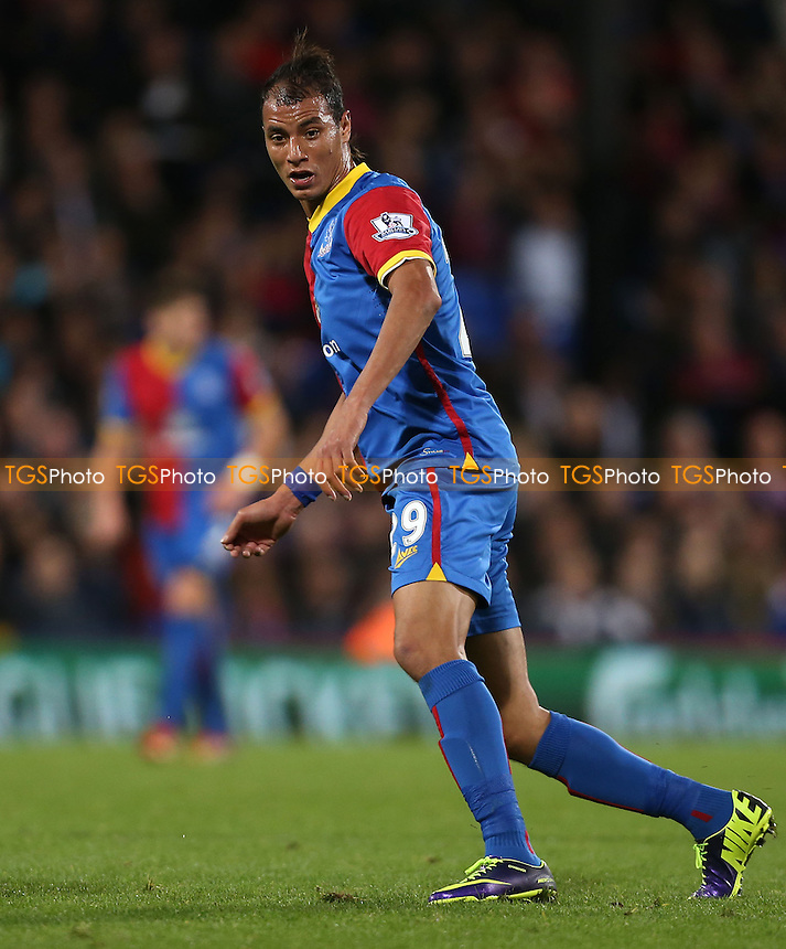 Marouane Chamakh of Crystal Palace - Crystal Palace vs Fulham, Barclays Premier League at Selhurst Park, Crystal Palace - 21/10/13 - MANDATORY CREDIT: Rob Newell/TGSPHOTO - Self billing applies where appropriate - 0845 094 6026 - contact@tgsphoto.co.uk - NO UNPAID USE