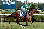 Raging Bull (no. 3) wins the Saranac Stakes (Grade 3), Sep. 1, 2018 at the Saratoga Race Course, Saratoga Springs, NY.  Ridden by Joel Rosario, and trained by Chad Brown, Raging Bull finished 1 1/4 lengths in front of Up the Ante (No. 1).  (Bruce Dudek/Eclipse Sportswire)