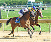 Traipse in Utopia winning at Delaware Park on 10/3/15
