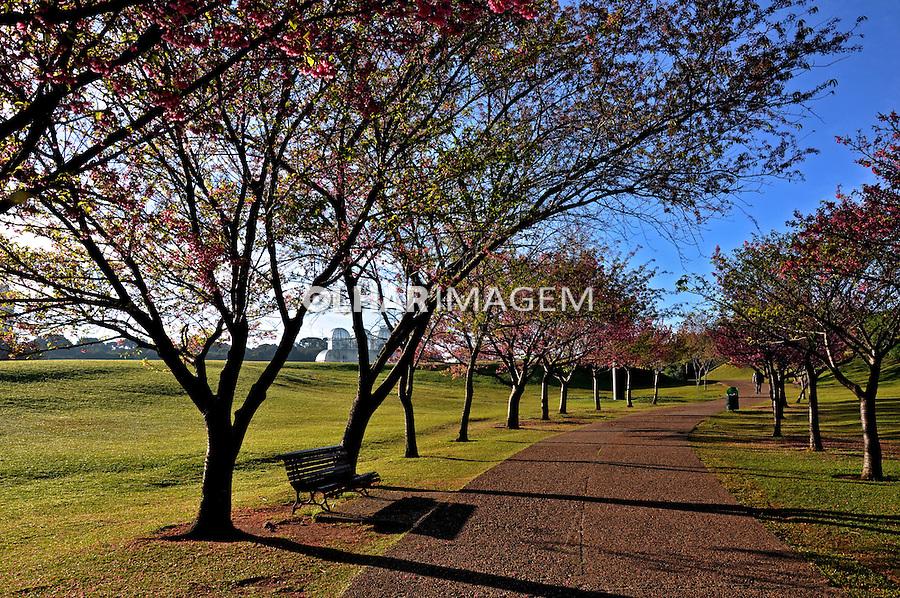 Parque Jardim Botanico de Curitiba. Parana. 2012. Foto de Alberto Viana.