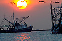 Shrimp boats outfitted to skim oil head out of Grand Isle to clean up the massive oil before it hits the Louisiana shore, Wed., June 9, 2010. Southeast Louisiana