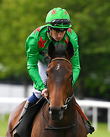 Smooth Sailing ridden by Oisin Murphy goes down to the start of The Dee Wilks Against The Odds Confined Novice Stakes (Div 2) during Afternoon Racing at Salisbury Racecourse on 12th June 2018