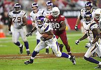 Dec 6, 2009; Glendale, AZ, USA; Minnesota Vikings running back (29) Chester Taylor against the Arizona Cardinals at University of Phoenix Stadium. The Cardinals defeated the Vikings 30-17. Mandatory Credit: Mark J. Rebilas-