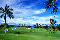 Kaanapali golf course with blue sky and palm trees on Maui