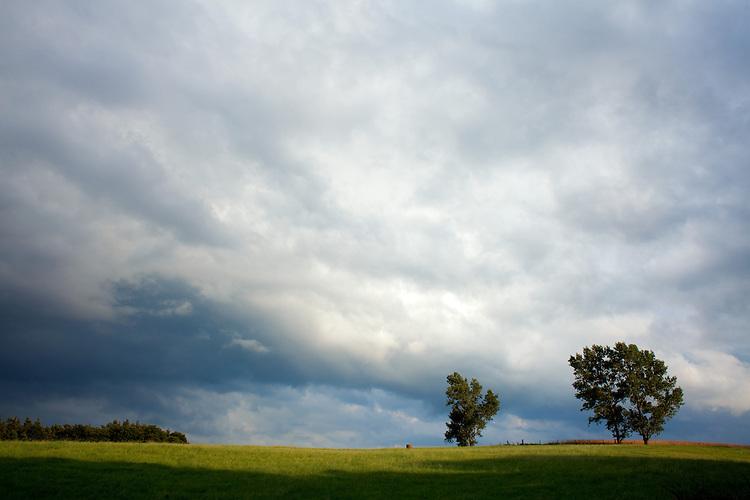 Europa, DEU, Deutschland, Nordrhein Westfalen, NRW, Eifel, Mechernich , Landschaft, Sommer, Regenfront, Unwetter, Regenwolken, Kategorien und Themen, Landwirtschaft, Landwirtschaftlich, Agrar, Agrarwirtschaft, Erzeugung, Landwirtschaftliche Produkte, Wetter, Himmel, Wolken, Wolkenkunde, Wetterbeobachtung, Wetterelemente, Wetterlage, Wetterkunde, Witterung, Witterungsbedingungen, Wettererscheinungen, Meteorologie, Bauernregeln, Wettervorhersage, Wolkenfotografie, Wetterphaenomene, Wolkenklassifikation, Wolkenbilder, Wolkenfoto<br /> <br /> [Fuer die Nutzung gelten die jeweils gueltigen Allgemeinen Liefer-und Geschaeftsbedingungen. Nutzung nur gegen Verwendungsmeldung und Nachweis. Download der AGB unter http://www.image-box.com oder werden auf Anfrage zugesendet. Freigabe ist vorher erforderlich. Jede Nutzung des Fotos ist honorarpflichtig gemaess derzeit gueltiger MFM Liste - Kontakt, Uwe Schmid-Fotografie, Duisburg, Tel. (+49).2065.677997, archiv@image-box.com, www.image-box.com]