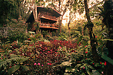 PANAMA, David, Guadalupe, Los Quetzales Lodge, Swiss style chalet in the cloud forest, Volcan Baru National Park and Cloud Forest of Friendship International Park, Central America