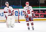 Stockholm 2014-02-24 Ishockey Hockeyallsvenskan Djurg&aring;rdens IF - S&ouml;dert&auml;lje SK :  <br /> S&ouml;dert&auml;ljes Jason Gregoire och S&ouml;dert&auml;ljes m&aring;lvakt Sebastian Idoff deppar efter matchen<br /> (Foto: Kenta J&ouml;nsson) Nyckelord:  depp besviken besvikelse sorg ledsen deppig nedst&auml;md uppgiven sad disappointment disappointed dejected