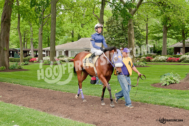 Hailey's Star before The Our Mims Stakes at Delaware Park on 5/18/13