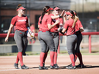 NWA Democrat-Gazette/CHARLIE KAIJO Arkansas Razorbacks players high-five during a softball match, Sunday, October 28, 2018 at Bogle Park, University of Arkansas in Fayetteville.<br />