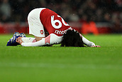 29th January 2019, Emirates Stadium, London, England; EPL Premier League Football, Arsenal versus Cardiff City; Matteo Guendouzi of Arsenal goes down injured