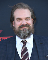 "28 June 2019 - Santa Monica, California - David Harbour. ""Stranger Things 3"" Los Angeles Premiere held at Santa Monica High School. Photo Credit: Birdie Thompson/AdMedia"