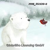 Isabella, CHRISTMAS ANIMALS, WEIHNACHTEN TIERE, NAVIDAD ANIMALES, paintings+++++,ITKE551636-S,#xa# ,icebear,icebears