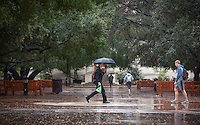 A student walks through the Academic Quad with an umbrella during a light rain, Feb. 28, 2014. (Photo by Marc Campos, Occidental College Photographer)