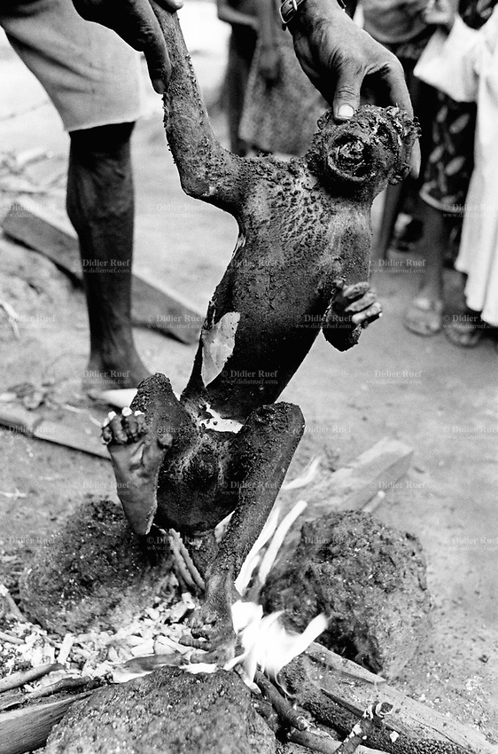 Guinea. High Guinea's state. Sembakounya (25 km from Dabola). Camp for Sierra Leoneans refugees. Man cooks on the fire a dead monkey he just shot outside the camp. The entire family will later eat the meat. © 2001 Didier Ruef