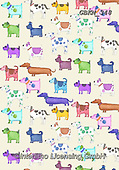 Kate, GIFT WRAPS, GESCHENKPAPIER, PAPEL DE REGALO, paintings+++++Madly bright dogs,GBKM348,#gp#, EVERYDAY