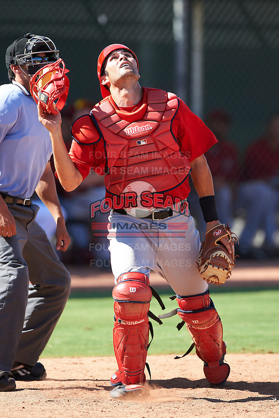 Los Angeles Angels minor league catcher Anthony Bemboom #28 during an instructional league game against the Arizona Diamondbacks at the Tempe Diablo Minor League Complex on October 1, 2012 in Tempe, Arizona.  (Mike Janes/Four Seam Images)