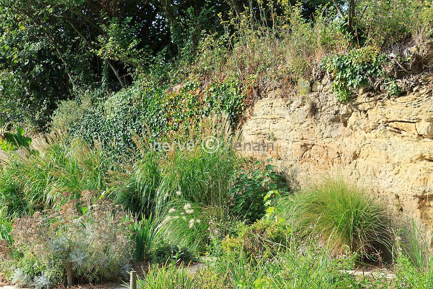 France, Vendée (85), Sallertaine, le jardin de Vaulieu.