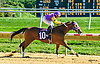 Word Racer winning at Delaware Park on 10/10/16