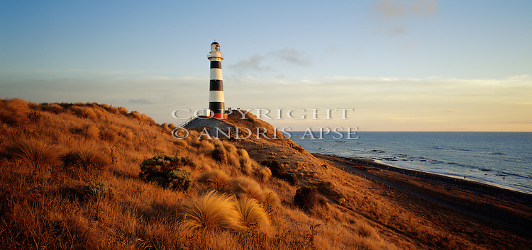 Lighthouse at Cape Campbell. Marlborough  Region. New Zealand.
