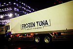 Tokyo, 1st of March 2010 - Tuna at Tsukiji wholesale fish market, biggest fish market in the world. 3 a.m, a truck containing frozen tunas getting into the market. Mitsubishi holds 60% of the world stock of frozen tunas.