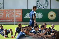 SÃO PAULO. SP 12.05.2014. PALMEIRAS/ TREINO - Jogadores do Palmeiras durante o treino na Academia de Futebol região oeste, nesta segunda feira 12. nesta ( Foto : Bruno Ulivieri / Brazil Photo Press )
