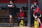 RALEIGH, NC - MAY 07: Louisville head coach Sandy Pearsall (center) watches the game from the dugout. The North Carolina State University Wolfpack hosted the University of Louisville Cardinals on May 7, 2017, at Dail Softball Stadium in Raleigh, NC in a Division I College Softball game. Louisville won the game 7-0.