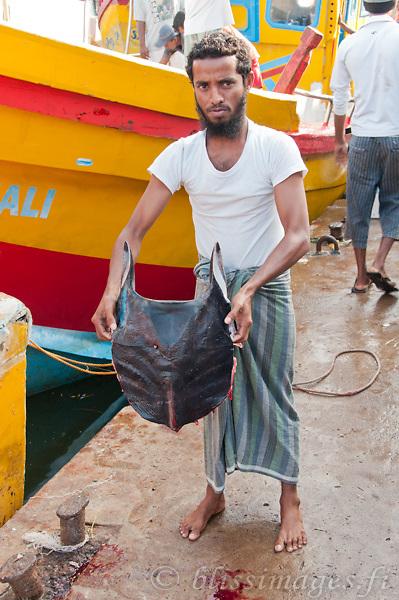 Our fisherman guide displays a ray at Beruwala fish docks, Sri Lanka
