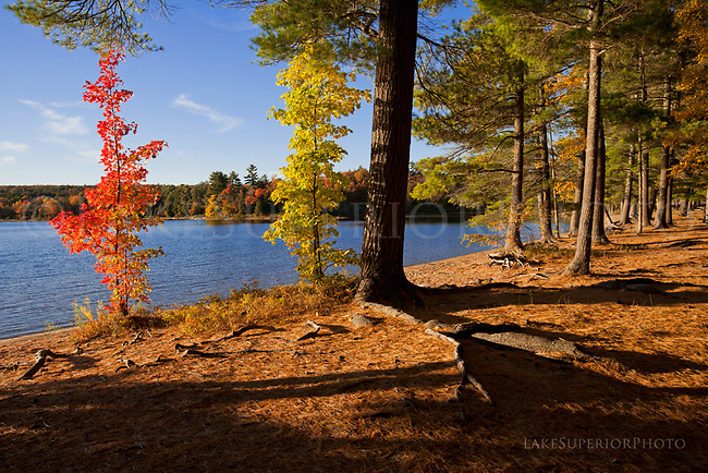Deer Lake, Alger County, Upper Peninsula of Michigan, Autumn