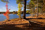 Deer Lake, Alger County, Upper Peninsula of Michigan, Autumn