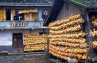 Drying corn on the homewalls